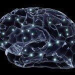 Neurologie Psychiatrie Gehirn